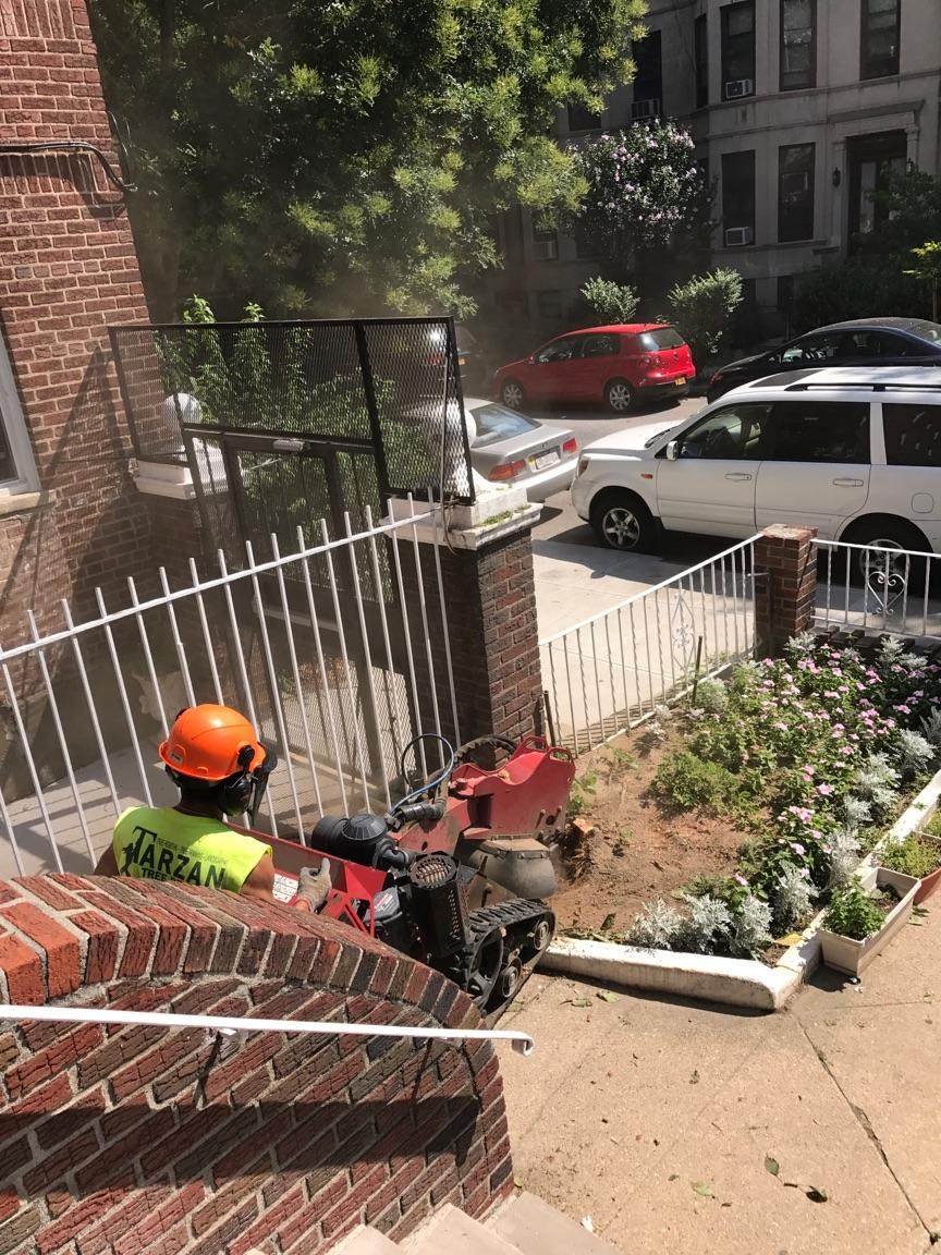 Stump Grinding Company Brooklyn