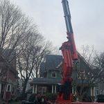 Crane Removal for Large Tree